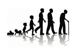 Etapy życia człowieka